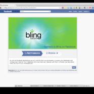 Bling Nation, Inc.